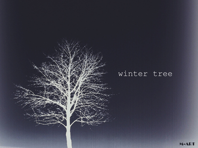 winter tree.jpg
